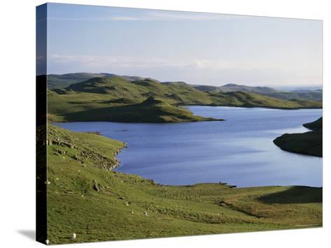 Llyn Teifi, Ceredigion, Mid-Wales, Wales, United Kingdom-Rob Cousins-Stretched Canvas Print
