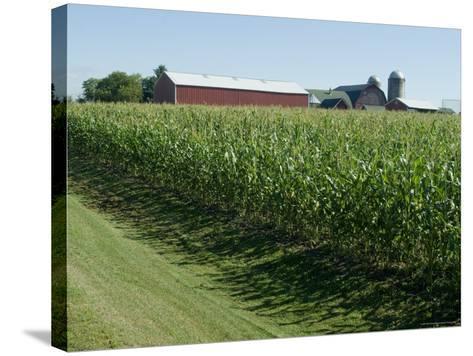 Farm, North Wood Park, Wisconsin, USA-Ethel Davies-Stretched Canvas Print