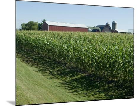 Farm, North Wood Park, Wisconsin, USA-Ethel Davies-Mounted Photographic Print