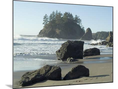 Trinidad State Beach, California, USA-Ethel Davies-Mounted Photographic Print