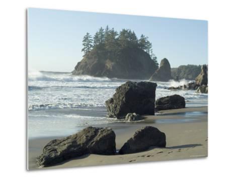 Trinidad State Beach, California, USA-Ethel Davies-Metal Print