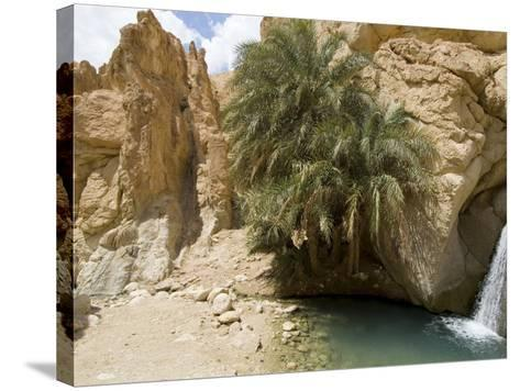 Desert Oasis, Chebika, Tunisia, North Africa, Africa-Ethel Davies-Stretched Canvas Print