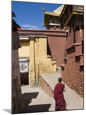 Ganden Monastery, Near Lhasa, Tibet, China-Ethel Davies-Mounted Photographic Print