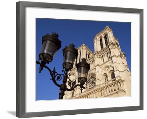 Notre Dame De Paris, Ile De La Cite, Paris, France-Neale Clarke-Framed Art Print