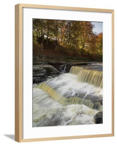 Lower Aysgarth Falls and Autumn Colours Near Hawes, Yorkshire Dales National Park, Yorkshire-Neale Clarke-Framed Art Print