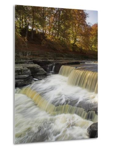 Lower Aysgarth Falls and Autumn Colours Near Hawes, Yorkshire Dales National Park, Yorkshire-Neale Clarke-Metal Print
