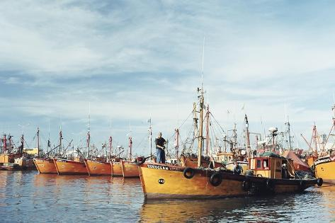Fishing Fleet in Port, Mar Del Plata, Argentina, South America-Mark Chivers-Stretched Canvas Print