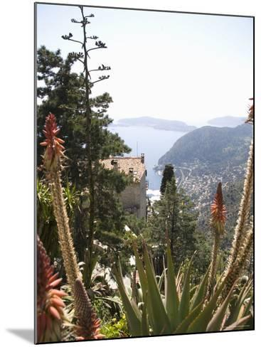 Eze, Alpes Maritimes, Provence, Cote d'Azur, French Riviera, France-Angelo Cavalli-Mounted Photographic Print