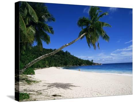 Anse Interdance, Mahe Island, Seychelles, Indian Ocean, Africa-Robert Harding-Stretched Canvas Print