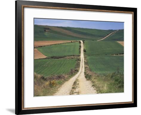 Grain Fields Between Najera and Azofra, La Rioja, Spain-Ken Gillham-Framed Art Print