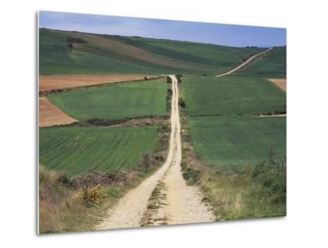 Grain Fields Between Najera and Azofra, La Rioja, Spain-Ken Gillham-Metal Print