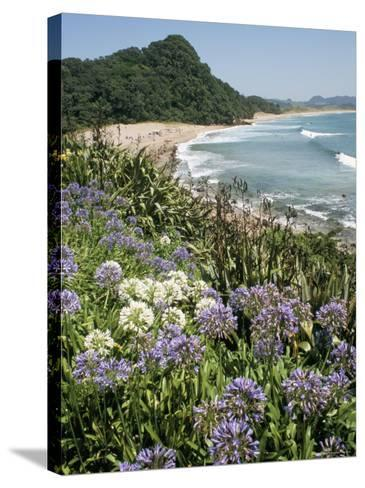 Hot Water Beach, Coromandel Peninsula, South Auckland, New Zealand-Ken Gillham-Stretched Canvas Print