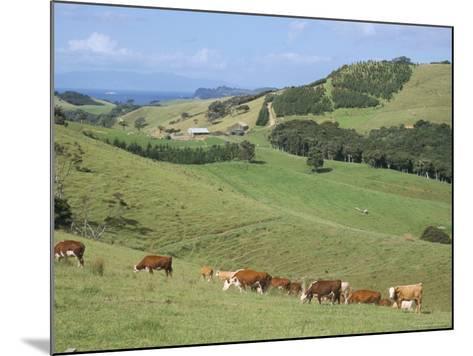 Middle Island Farm, Waiheke Island, Hauraki Gulf, North Island, New Zealand-Ken Gillham-Mounted Photographic Print
