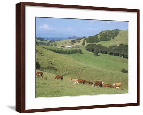 Middle Island Farm, Waiheke Island, Hauraki Gulf, North Island, New Zealand-Ken Gillham-Framed Art Print