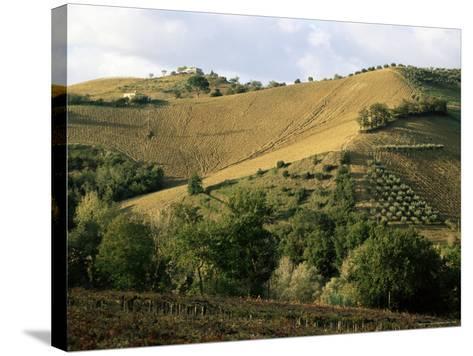 Landscape Near Chieti, Abruzzo, Italy-Michael Newton-Stretched Canvas Print