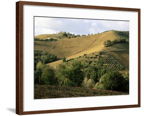 Landscape Near Chieti, Abruzzo, Italy-Michael Newton-Framed Art Print