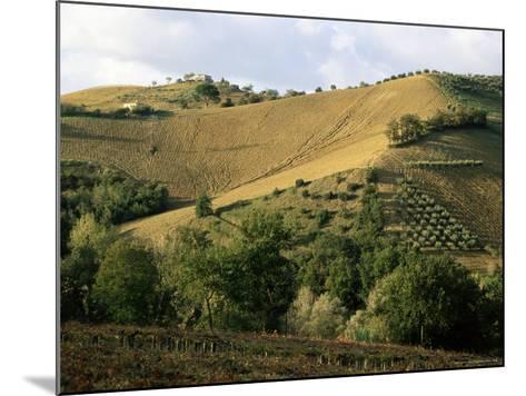 Landscape Near Chieti, Abruzzo, Italy-Michael Newton-Mounted Photographic Print