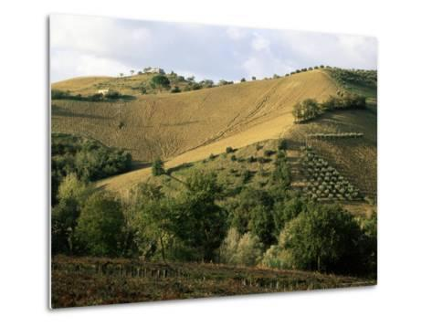 Landscape Near Chieti, Abruzzo, Italy-Michael Newton-Metal Print