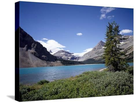 Bow Lake with Bow Glacier Behind, Icefields Parkway, Banff National Park, Alberta-Geoff Renner-Stretched Canvas Print