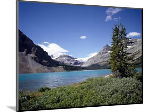 Bow Lake with Bow Glacier Behind, Icefields Parkway, Banff National Park, Alberta-Geoff Renner-Mounted Photographic Print