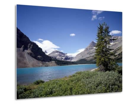 Bow Lake with Bow Glacier Behind, Icefields Parkway, Banff National Park, Alberta-Geoff Renner-Metal Print