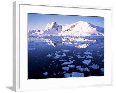 West Coast, Antarctic Peninsula, Antarctica, Polar Regions-Geoff Renner-Framed Art Print