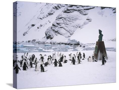 Point Wild, One of the Most Historic Locations in the Antarctic, Antarctica-Geoff Renner-Stretched Canvas Print