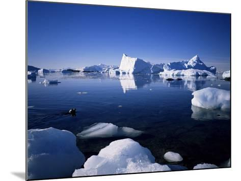 Ice Scenery and Seal, Antarctica, Polar Regions-Geoff Renner-Mounted Photographic Print