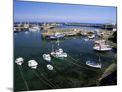 Harbour and Fishing Fleet, Penzance, Cornwall, England, United Kingdom-Gavin Hellier-Mounted Photographic Print