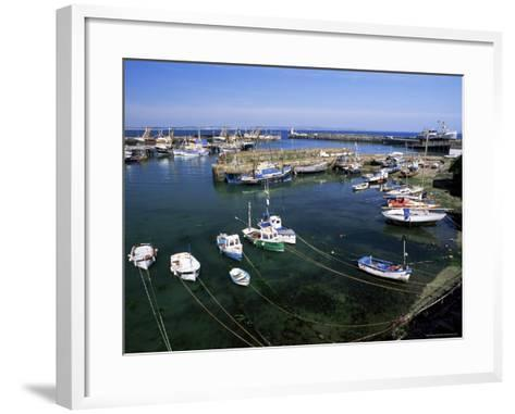 Harbour and Fishing Fleet, Penzance, Cornwall, England, United Kingdom-Gavin Hellier-Framed Art Print