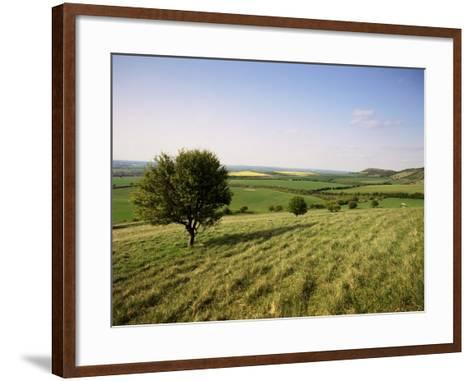 Ivinghoe Beacon from the Ridgeway Path, Chiltern Hills, Buckinghamshire, England-David Hughes-Framed Art Print