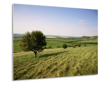 Ivinghoe Beacon from the Ridgeway Path, Chiltern Hills, Buckinghamshire, England-David Hughes-Metal Print