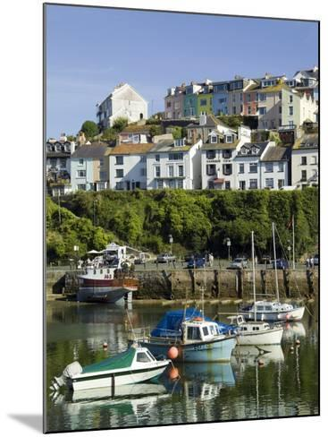 Brixham Harbour, Devon, England, United Kingdom-David Hughes-Mounted Photographic Print