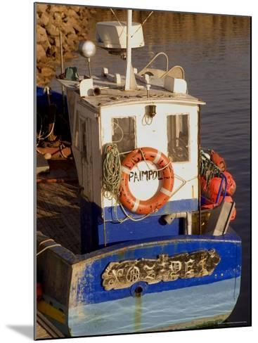 Fishing Boat in Port at Coastal Resort of Trebeurden, Cotes d'Armor, France-David Hughes-Mounted Photographic Print