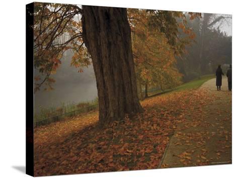 Couple Walking Through the Jephson Gardens in Autumn, Leamington Spa, Warwickshire, England-David Hughes-Stretched Canvas Print