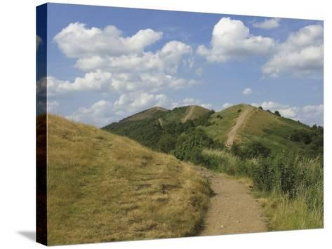 Footpath Along the Main Ridge of the Malvern Hills, Worcestershire, Midlands, England-David Hughes-Stretched Canvas Print