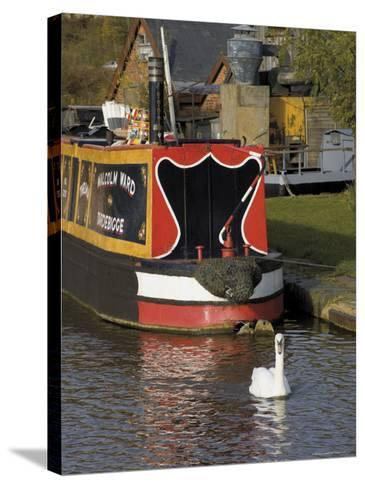 Swan and Narrowboat Near the British Waterways Board Workshops, Tardebigge, England-David Hughes-Stretched Canvas Print