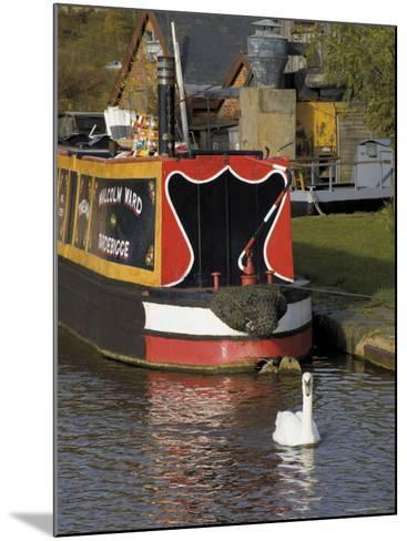 Swan and Narrowboat Near the British Waterways Board Workshops, Tardebigge, England-David Hughes-Mounted Photographic Print