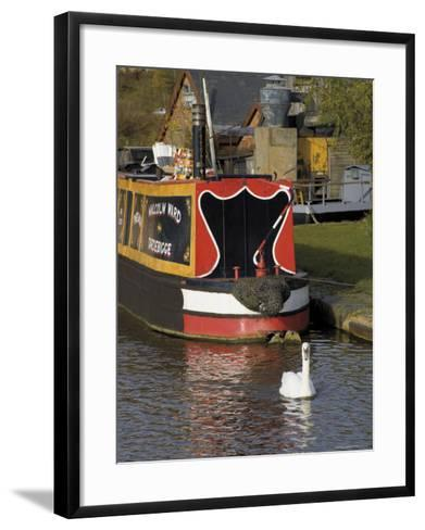 Swan and Narrowboat Near the British Waterways Board Workshops, Tardebigge, England-David Hughes-Framed Art Print