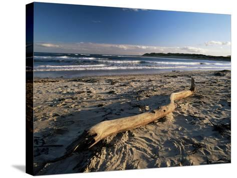 Beach and Sea at Dusk, Alnmouth, Northumberland, England, United Kingdom-Lee Frost-Stretched Canvas Print