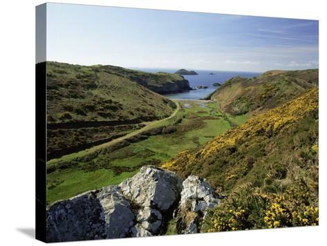 View to Sea and Beach from Coast Path Near Lower Solva, Pembrokeshire, Wales, United Kingdom-Lee Frost-Stretched Canvas Print