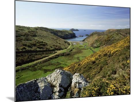 View to Sea and Beach from Coast Path Near Lower Solva, Pembrokeshire, Wales, United Kingdom-Lee Frost-Mounted Photographic Print