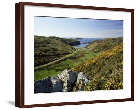 View to Sea and Beach from Coast Path Near Lower Solva, Pembrokeshire, Wales, United Kingdom-Lee Frost-Framed Art Print