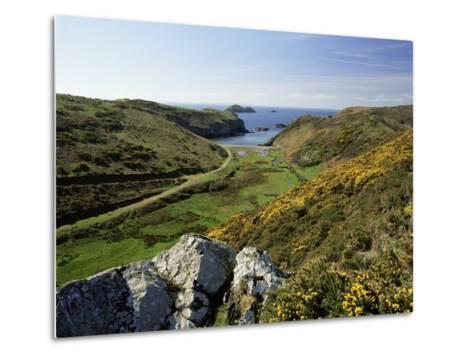 View to Sea and Beach from Coast Path Near Lower Solva, Pembrokeshire, Wales, United Kingdom-Lee Frost-Metal Print