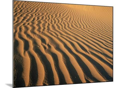 Ripples in the Sand, Sesriem, Namib Naukluft Park, Namibia, Africa-Lee Frost-Mounted Photographic Print
