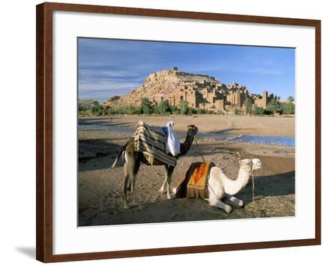 Camels by Riverbank with Kasbah Ait Benhaddou, Unesco World Heritage Site, in Background, Morocco-Lee Frost-Framed Art Print