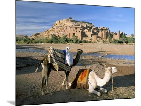 Camels by Riverbank with Kasbah Ait Benhaddou, Unesco World Heritage Site, in Background, Morocco-Lee Frost-Mounted Photographic Print