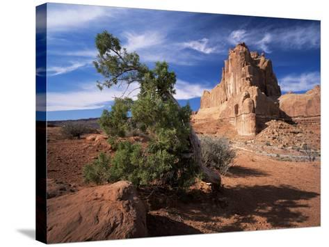 Sandstone Cliffs, Arches National Park, Moab, Utah, USA-Lee Frost-Stretched Canvas Print