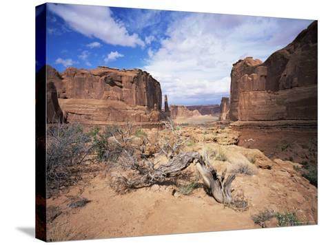 Park Avenue, Arches National Park, Moab, Utah, USA-Lee Frost-Stretched Canvas Print