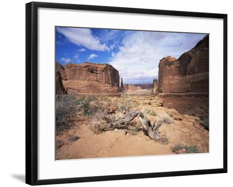 Park Avenue, Arches National Park, Moab, Utah, USA-Lee Frost-Framed Art Print